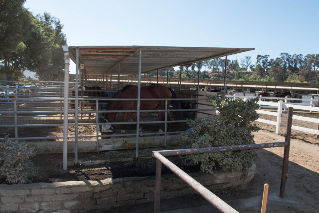 Partial Shade - $285/mo. - 12x24 - 1/2 covered